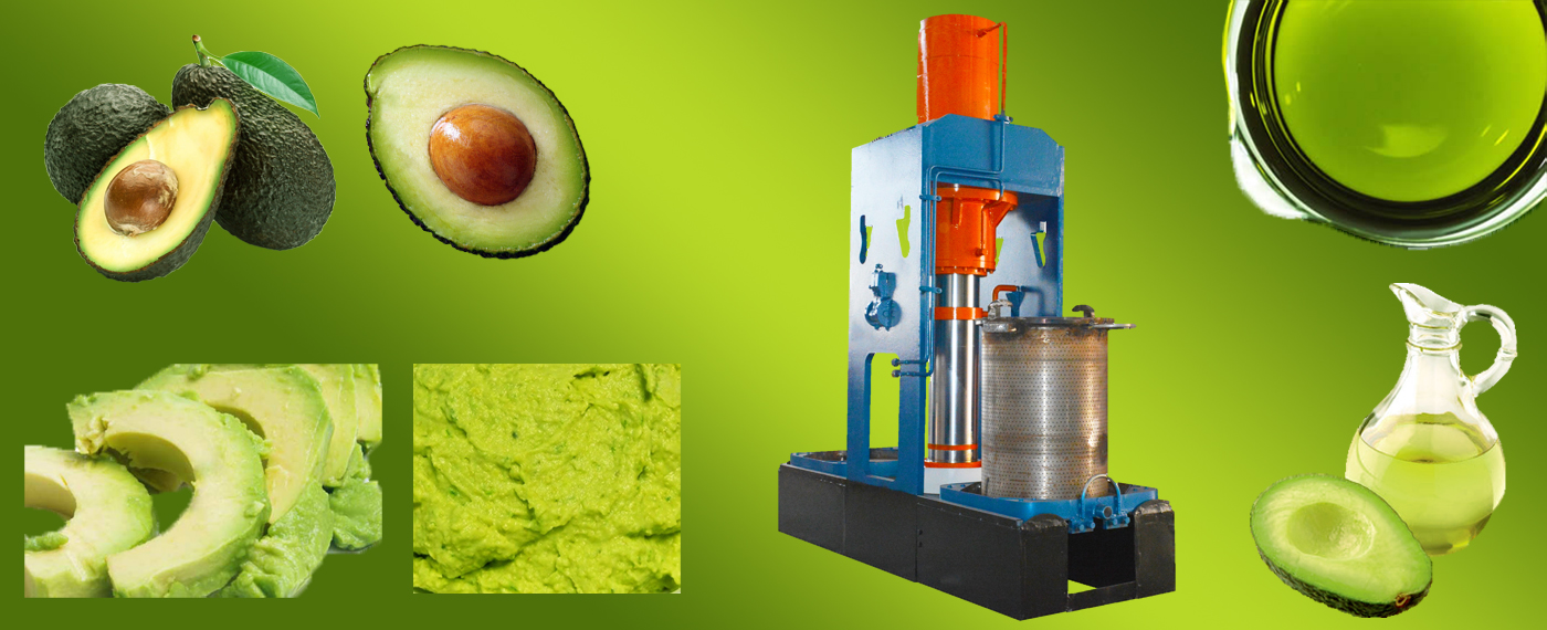 banner-avocado oil press