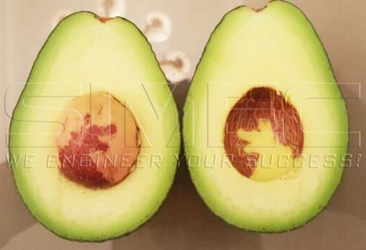 avocado-fruits