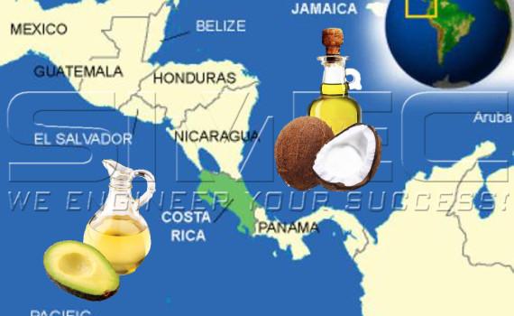 cocoanut-and-avocado-oil-in-costa-rica