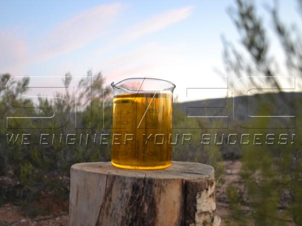 Pure-Apricot-Kernel-Oil