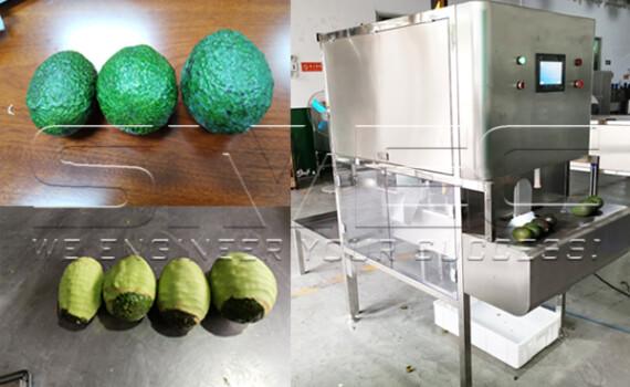 Avocado Peeling and Pitting Test